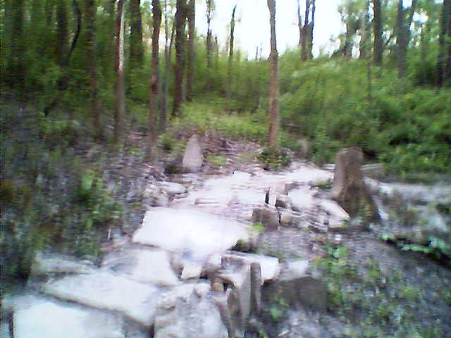 A stone bump trail to make life interesting... too blurry to make out though...